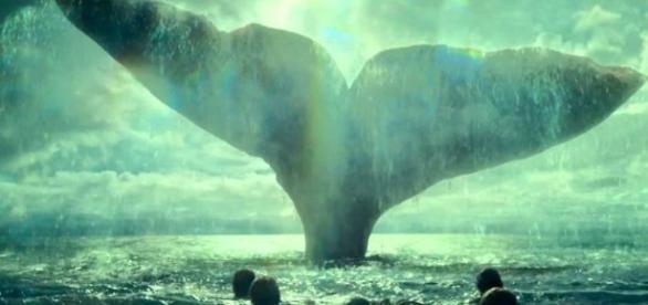 Qual foi o ataque de baleia mais marcante da história? (Foto: Reprodução)