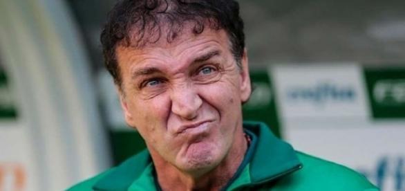 Treinador do Palmeiras pede um novo atacante