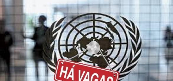 Vagas emprego abertas na ONU, inscreva-se