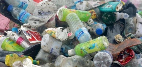 Retiran 4 mil metros cúbicos de basura al mes en Mexicali | El ... - eltijuanense.com