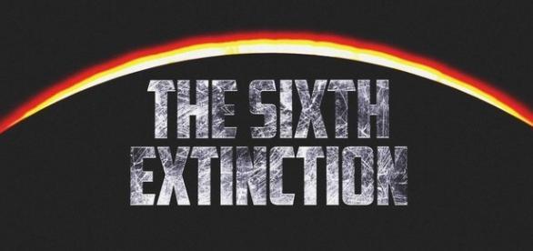 Cientistas dizem que o mundo já está vivendo a sexta extinção em massa