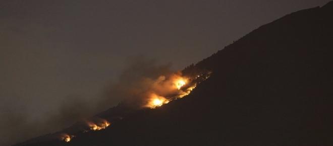 Incendio Vesuvio, piromani avrebbero cosparso gatti di benzina