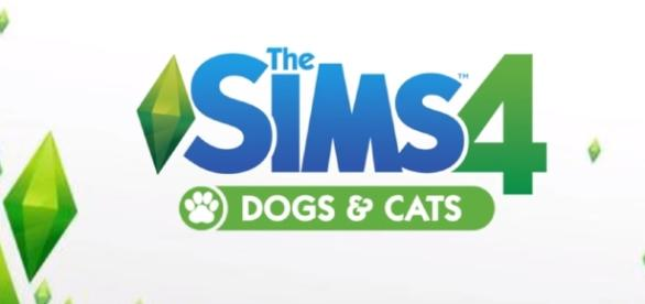 The next teaser is coming shortly for 'The Sims 4' and fans are excited to hear about Pets or Seasons DLC. SimmerJonny/YouTube