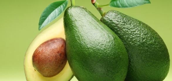 Abacate: Engorda ou emagrece? Como consumir? Quais os benefícios?
