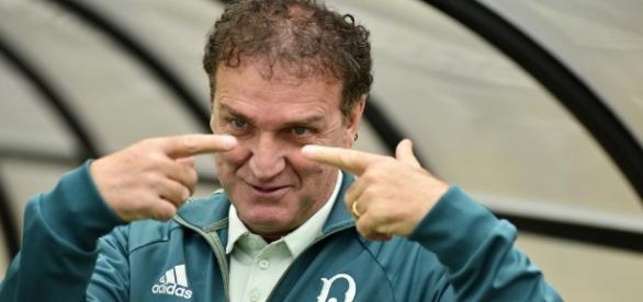 Cuca, técnico do Palmeiras, está de olho em meia