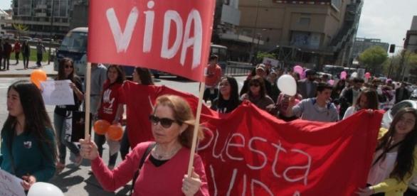 Manifestantes Pro Vida aparecieron en el Senado