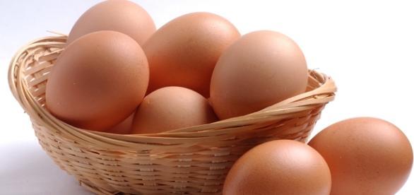 Se consumir ovos no café da manhã você diminuirá sua fome durante todo dia. ( Foto: Reprodução)