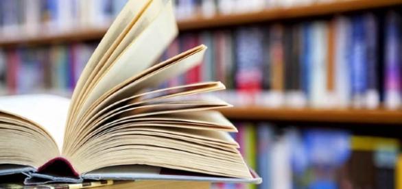"""Agentes da Fundação Gregório de Mattos """"esquecerão"""" livros na Estação da Lapa e no Parque da Cidade (Foto: Reprodução)"""