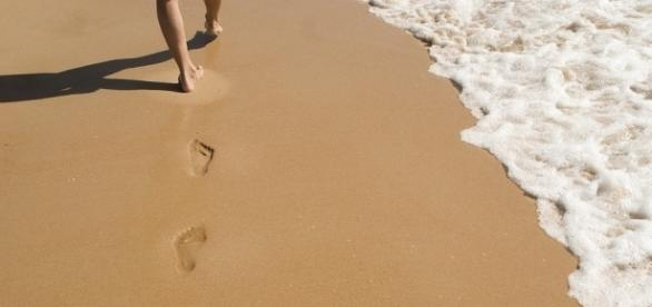 Walking along the beach stress free- pixabay.com - phoenixsierra0