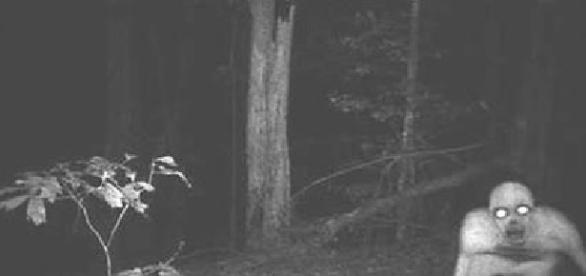 Fantasmas existem ou não? Essas fotos poderão te deixar em dúvida (Foto/Google)