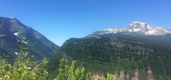 My meditation spot in Glacier National Park - Image Maranda Saling (Own work)