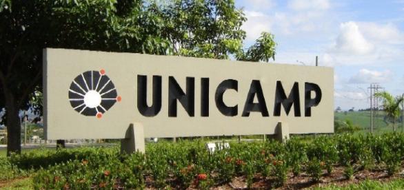Unicamp á a instituição brasileira que encabeça o ranking das melhores universidade da América Latina. ( Foto: Reprodução)