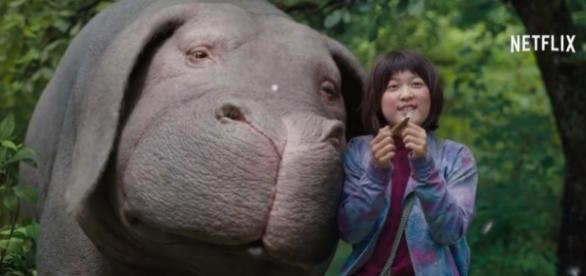 A screenshot of Okja/Photo via Netflix