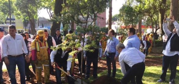 Miguel Ángel Mancera planta un árbol durante programa Tu Ciudad te Requiere.