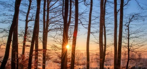 12 regole importanti per chi viaggia nella natura.