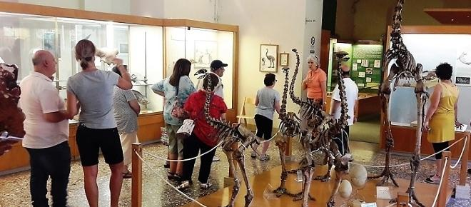 Quando le visite al museo diventano un diritto