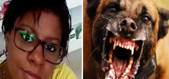 Adriana Vicente da Silva, de 36 anos, morreu por raiva humana