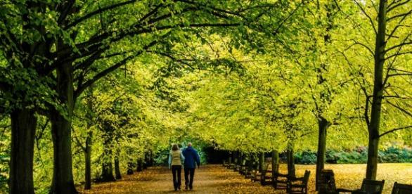 Cuidar al medio ambiente es cuidar la salud | Discovery - discovery.com