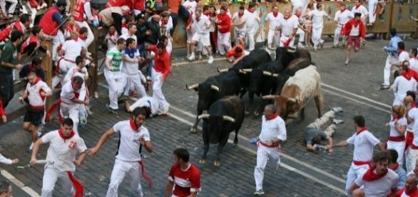 San Fermin kicked off in Spain, and the running bulls await. - photo via Sanfermin.com/Flickr - flickr.com
