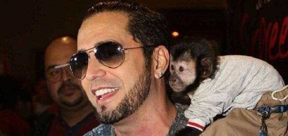 Latino e Twelves, macaco de estimação de 4 anos, que fugiu nesta semana - Reprodução/Google
