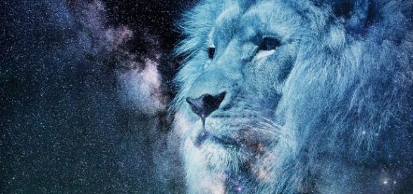 Free illustration: Leo, Starry Sky, Night, Blue - Free Image on ... - pixabay.com
