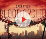 Rainbow Six Siege: Operation Blood Orchid goes to Hong Kong this ... - videogamer.com