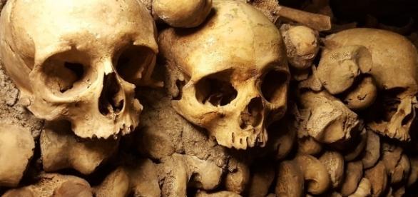 Una guerra vigente que ya duró dos sexenios, 300 mil víctimas entre muertos y desaparecidos, demostraron que la muerte es negocio rentable.
