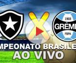 Botafogo e Grêmio jogam às 19 horas, no Engenhão