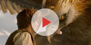 """Cena do filme """"Animais Fantásticos e Onde Habitam"""", de 2016."""