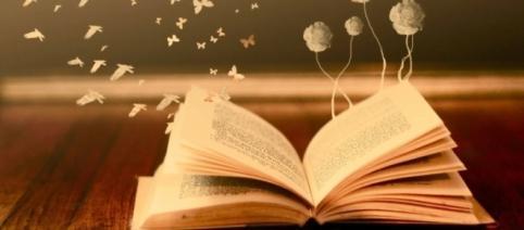 Fiecare carte ascunde o poveste.