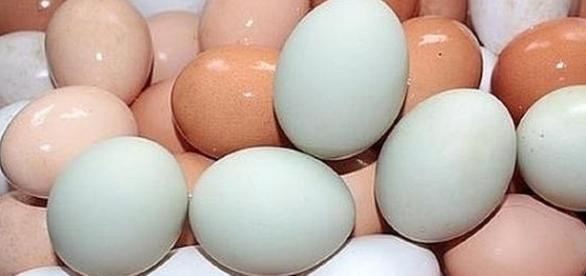 Benefits of eating eggs [Image: pixabay.com]