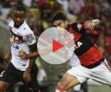 Flamengo e Atlético-GO irão se enfrentar neste sábado (19).