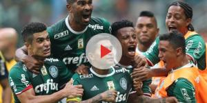 Palmeirenses comemoram gol no Allianz Parque