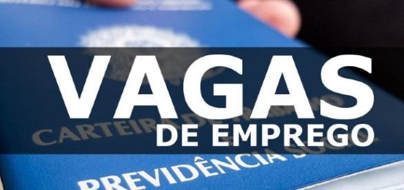 Empresa procura candidato para viajar pelo Brasil