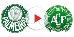 Duelo verde será às 19 horas, no Allianz
