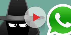 Come leggere i messaggi di WhatsApp senza risultare online su Android e iOS