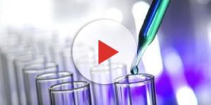Nuove Assunzioni Chiesi Farmaceutica e Fenix Pharma: domanda agosto-settembre 2017