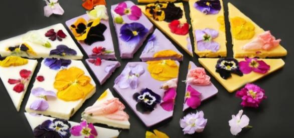 Edible flowers in chocolate bark / LOVE_The_SCOOP YouTube Channel