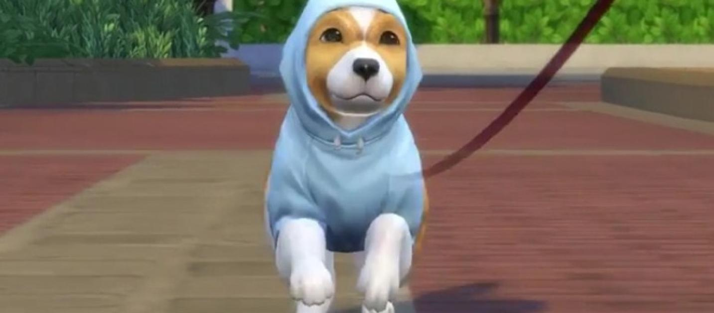 Sims  Dog And Cats Breeds