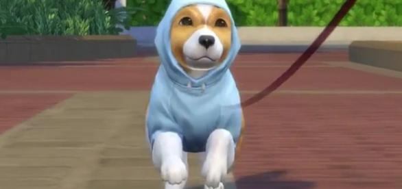 'The Sims 4' Cats and Dogs Expansion/ screen capture from The Sims Official YouTube page
