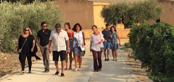 Vendemmia 2017 in Sicilia, tra i vigneti di Planeta a Sambuca di Sicilia: raccolta delle uve, visita in cantina, degustazioni vini