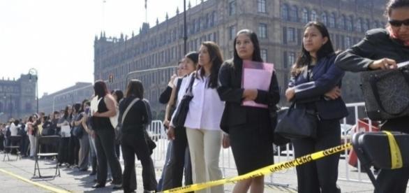En México a mayor escolaridad menor oportunidad de empleo, los profesionistas ocupan puestos de vendedores, por necesidad, más que por convicción