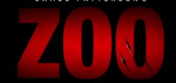 Zoo logo youtube screenshot at https://youtu.be/6FJm7y2POY8 channel: lucie borikova