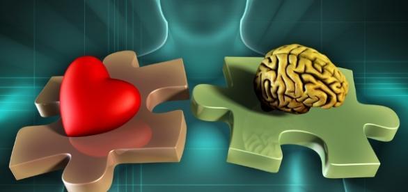 Emotional Intelligence Training: How to Develop Emotional Intellegence - udemy.com