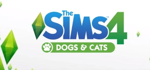 Fans uncover an interesting clue hinting the addition of pets. [Image via YouTube/The Sims 4]