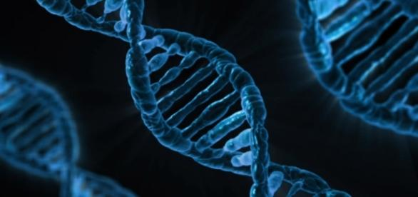 Gene manipulation leading to healing of diseases