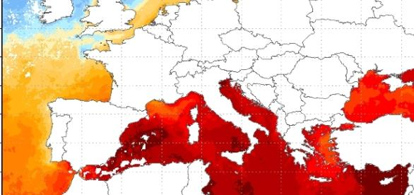 Le altissime temperature, sino a +29°C, registrate sui mari italiani