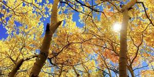 Quando cade l'equinozio d'autunno