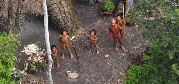 Brazilian massacre of uncontacted natives is nothing new (G.Miranda/Funai/Survival International)