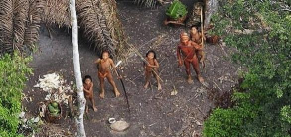 Zece membri ai unui trib necontactat din jungla amazoniană au fost uciși de căutătorii de aur - Foto: Daily Mail